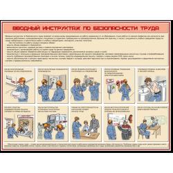 """Плакат """"Вводный инструктаж..."""