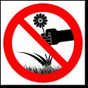 Запуск квадрокоптеров запрещен